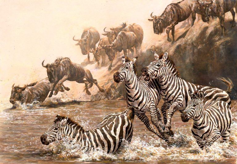 Annual festival safaris